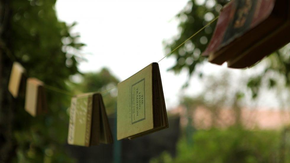 Libros colgando de una cuerda en un entorno con naturaleza. Grupo de Trabajo COTEC de la Transferencia a la Cooperación