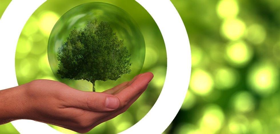 Webinar Next Generation EU La Revolución de la Energía Sostenible (y Cómo Aplicarla para Generar Beneficios)
